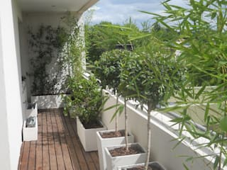Asian style balcony, veranda & terrace by Estudio Nicolas Pierry: Diseño en Arquitectura de Paisajes & Jardines Asian