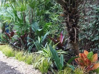 Garden by Estudio Nicolas Pierry: Diseño en Arquitectura de Paisajes & Jardines, Tropical