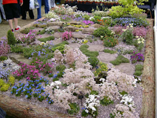 Create a colourful alpine garden. by Ice Alpines Класичний