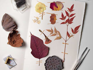 Herbarium project :  in stile  di Azimut