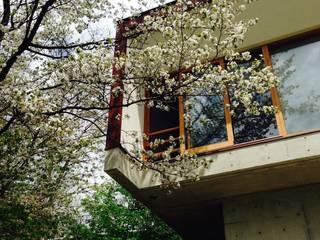 Casas estilo moderno: ideas, arquitectura e imágenes de 伊東亮一建築設計事務所 Moderno