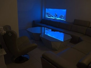 In wall aquarium Cambridgeshire Aquarium Services Ruang Keluarga Modern