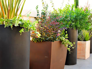 de ésverd - jardineria & paisatgisme Ecléctico