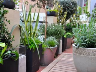 不拘一格  by ésverd - jardineria & paisatgisme, 隨意取材風
