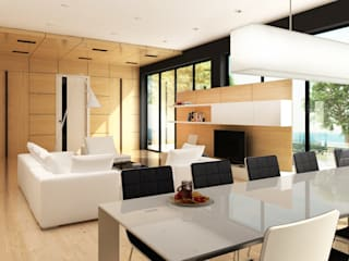 Lenz Architects Living room