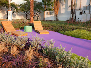 Refúgio Zen - Casa Cor MS 2014 Jardins modernos por Adines Ferreira Paisagismo Moderno