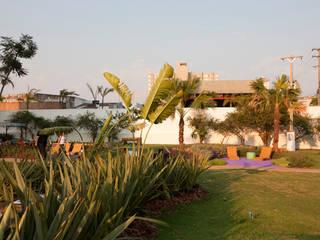 Modern Garden by Adines Ferreira Paisagismo Modern