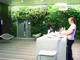 Headquarter Microsoft/Vienna:  Bürogebäude von GREEN URBAN LIFE GMBH
