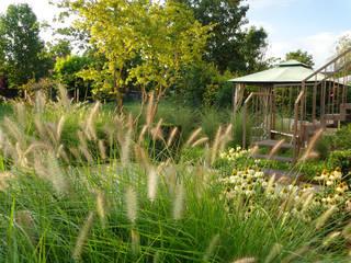 Jardines de estilo moderno de matiteverdi Moderno