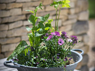 Bibury Tabletop Planter:   by Garden Trading