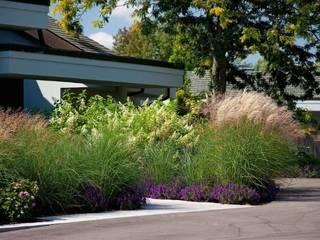 Pflanzen & Co. Moderner Garten von Ecologic City Garden - Paul Marie Creation Modern