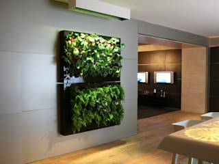 tropical  by Quadro Vivo Urban Garden Roof & Vertical, Tropical