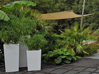 Pyramidal Image'In planters for a « Jungle Chic » decoration ! Tropical style garden by ATELIER SO GREEN Tropical