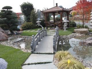 Realizzazioni giardini Giardino in stile asiatico di Azienda agricola Vivai Romeo Asiatico
