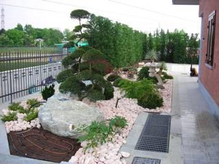 Vườn phong cách châu Á bởi Azienda agricola Vivai Romeo Châu Á