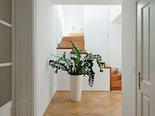 Koridor & Tangga Minimalis Oleh Moser Architects Minimalis