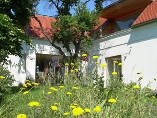 Bild 1:  Häuser von baldassion architektur