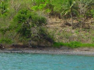 GANNE House - Mayotte island Maisons tropicales par STUDY CASE sas d'Architecture Tropical