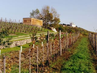 Weinhaus am Kahlenberg, WIen: moderner Weinkeller von kp. consulting group ZT-GESMBH