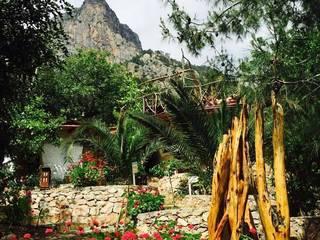 Hotels by badem ağacı, Mediterranean