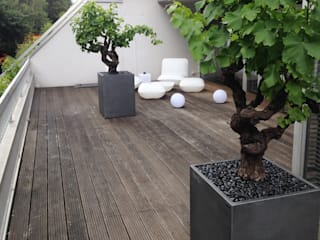 Image'In cubic planters with a patina of zinc imitation ! ATELIER SO GREEN Modern balcony, veranda & terrace