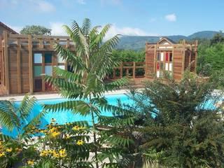 Pergola, pool house FA'BRIC ET BOIS Piscine originale