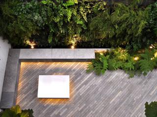 Garden by DF ARQUITECTOS,