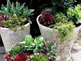 Inspiracje na ciekawe kompozycje ogrodowe: styl , w kategorii Taras zaprojektowany przez Ired-Garden