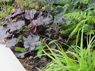 Stylish Outdoor Room Modern garden by Christine Wilkie Garden Design Modern