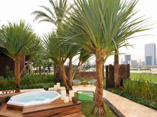 Modern style gardens by ricardo pessuto paisagismo Modern