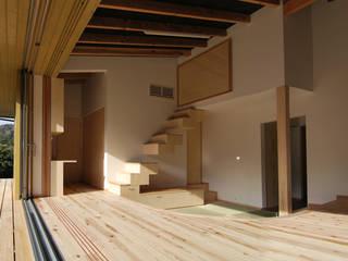 茶畑の家 原 空間工作所 HARA Urban Space Factory 玄関&廊下&階段引き出し&棚