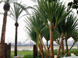 ricardo pessuto paisagismo Taman Modern