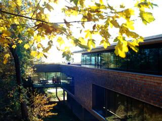 Haus H: moderne Häuser von becker architekten