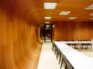 Techos y revestimientos acústicos en madera SPIGOGROUP Estudios y despachos de estilo clásico