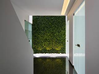 OFICINAS CLC: Pasillos y recibidores de estilo  por Micheas Arquitectos