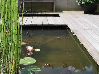 Gartenhof, Köln: modern  von Planungsbüro Garten und Freiraum,Modern
