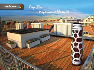 Bee Home Moderner Balkon, Veranda & Terrasse von Raphael Klaffenböck - Design und Produktmanagement Modern