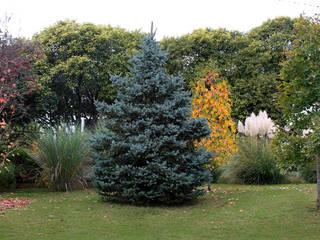 Otoños que enamoran en la villa.. color, textura, sensaciones... Jardines clásicos de MARIELA DURA ARQUITECTURA PAISAJISTA Clásico