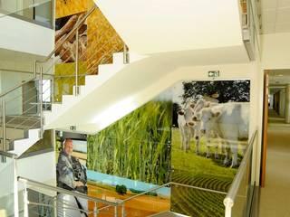 Escalier principal  support communication métiers du groupe coopératif agricole: Bureaux de style  par STUDIO NOA INTERIEURS
