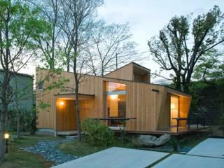 Vườn phong cách hiện đại bởi IBC DESIGN Hiện đại