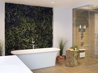 Artificial Green Wall in bathroom: rustic Bathroom by Evergreen Trees & Shrubs