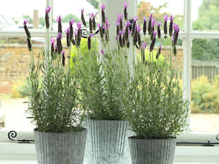 Galvanised Ribbed Metal Planter ELLA JAMES Garden Plant pots & vases