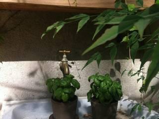 Jardines de estilo rústico de Asilvestrada Rústico
