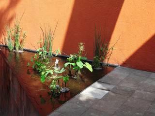 Quinto Distrito Arquitectura Modern garden Stone Orange