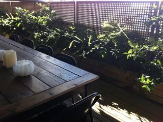 Terraza selvática y de sombra : Terrazas de estilo  de Asilvestrada