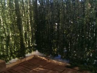Aménagement d'un balcon par In&Out Garden Méditerranéen