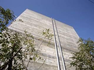 公園を臨む家 オリジナルな 壁&床 の Egawa Architectural Studio オリジナル