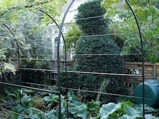 through the looking glass: a surreal garden of distortion and scale:  Garden by carol whitehead garden design