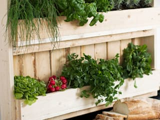 Pop up Pallets Balconies, verandas & terraces Plants & flowers