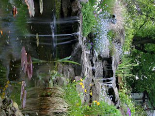 Ogród Nowoczesny ogród od Architektura krajobrazu- naturalne systemy uzdatniania wod Nowoczesny